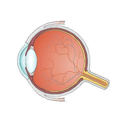 Augenlasern in Augsburg - Augenklinik