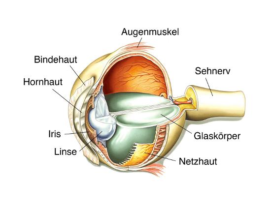 Augenlasern in Berlin - Augenklinik