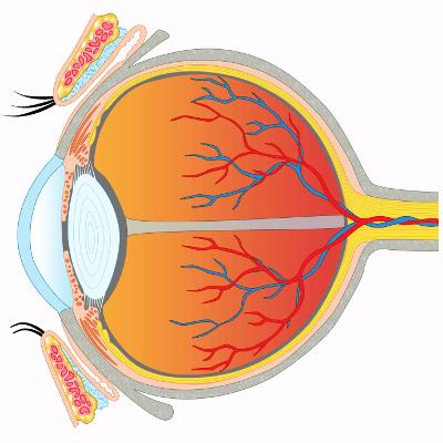 Augenlasern in Bratislava - Augenklinik