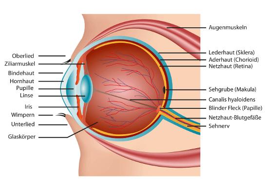 Augenlasern in Deutschland - Augenklinik