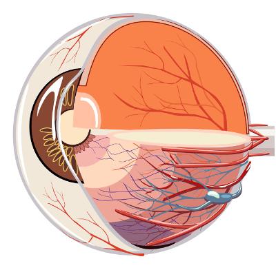 Augenlasern in Dortmund - Augenklinik