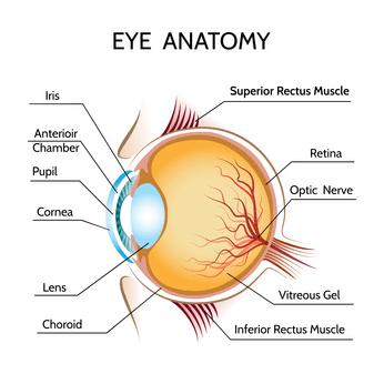 Augenlasern in Istanbul - Augenklinik
