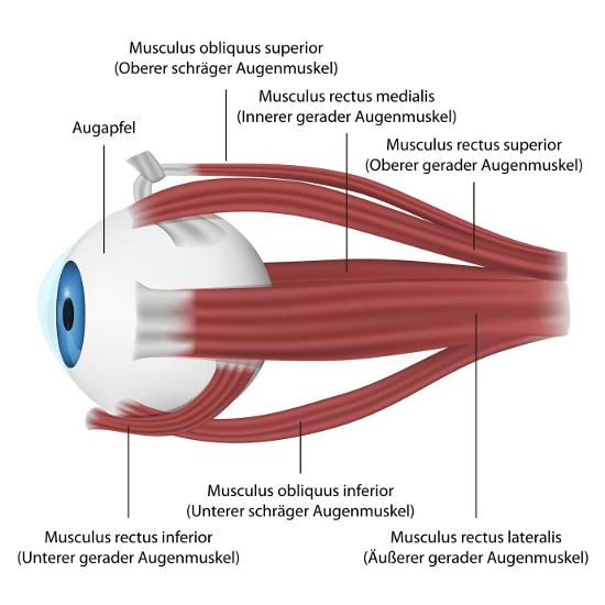 Augenlasern in München - Augenklinik