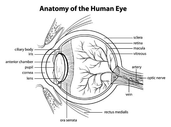 Augenlasern in Neu-Ulm - Augenklinik