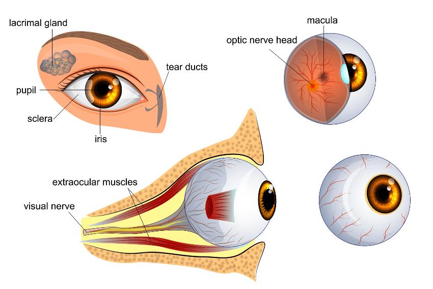 Augenlasern in der Schweiz - Augenklinik