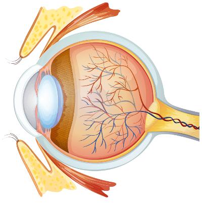 Augenlasern in der Türkei - Augenklinik