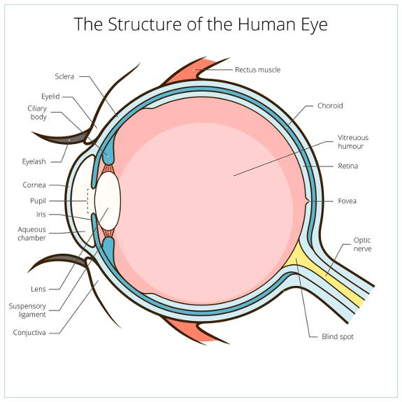 Augenlasern in Zürich - Augenklinik